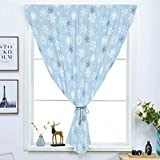 Best Warner Bros. In Babies - Blackout Window Curtain,Free Punching Magic Stickers Curtain,Winter,Cold Weather Review