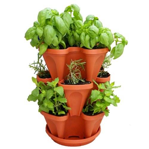 Garden Stacker Planter + Indoor Culinary Herb Garden Kit   Great Gift Idea    Grow Cooking Herbs   Seeds: ...