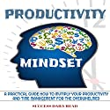 Productivity Mindset: A Practical Guide How to Multiply Your Productivity and Time Management for the Overwhelmed Audiobook by  Success Daily Read Narrated by Dean Eby
