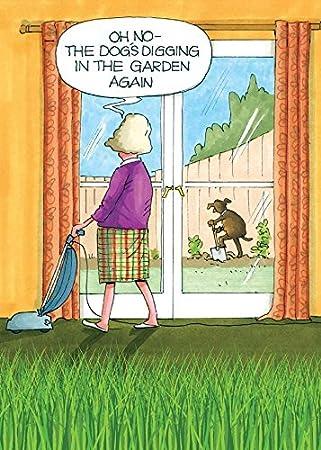 Humorous Greeting Card PH7327 Blank Birthday
