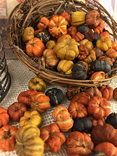 Orange, Yellow, and Black Tiny Putka Pods Mini Pumpkin Shaped Botanical Potpourri Bowl Vase Filler Crafting Element 5 FULL Cups ()