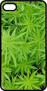 420 Marijuana Plants Hydroponics LED HPS MH Black Plastic Case for Apple iPhone 6 Plus