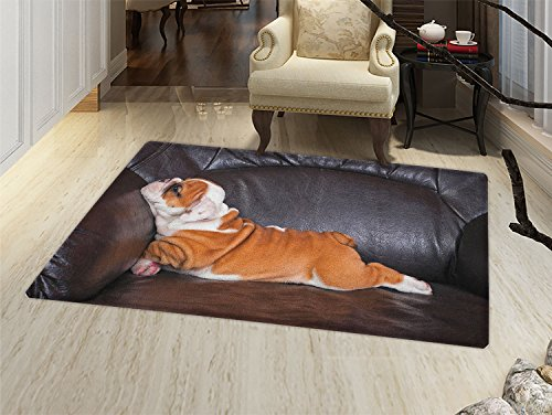 smallbeefly English Bulldog Bath Mat for tub Puppy Resting on a Sofa Funny Animal Photography Cute Canine Door Mats for inside Bathroom Mat Non Slip Backing Seal Brown White Brown