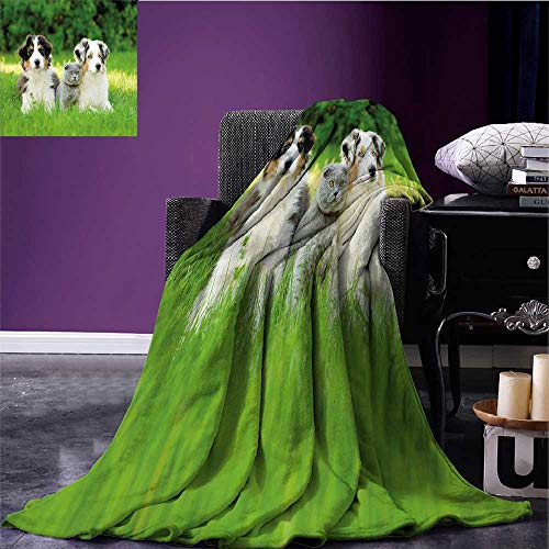 (homehot Dog Printing Blanket Cute Pets Puppy Family in The Garden Australian Shepherds and A Cat Scenery Warm All Season Blanket for Cream Grey Fern Green Bed or Couch 90