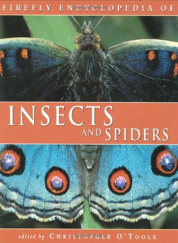 Firefly Encyclopedia of Insects and Spiders pdf epub