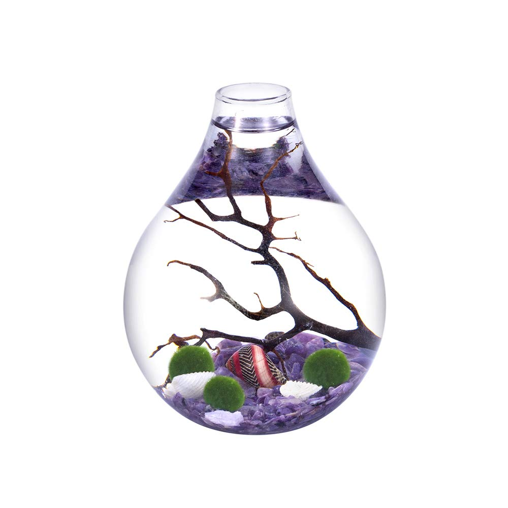 Aquatic Aquarium kit - Charoite Gravels with 3 Living Moss Balls and Shells in Teardrop Globe Terrarium, Unique Ecosystem Gift for Christmas, Wedding Event by EssenceLiving