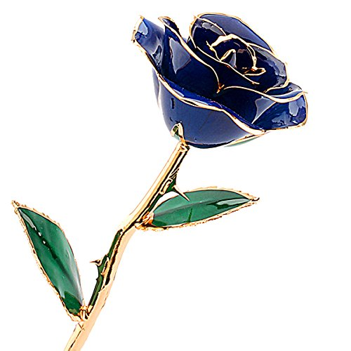 (ZJchao Deep Blue Gold Rose for Women, Love Forever Long Stem Dipped 24k Foil Trim Rose, Best Gift for Valentine's/Mother's/Anniversary/Birthday Day (Blue))