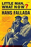 Front cover for the book Little Man, What Now? by Hans Fallada