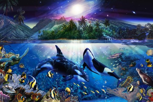Expert 1000 piece of a puzzle Lassen Harmonious Orcas II 12-032
