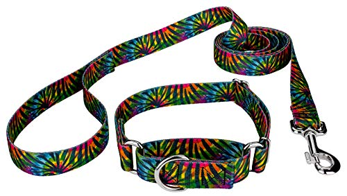 Stripe Martingale Dog Collar - Country Brook Petz - Tie Dye Stripes Martingale Dog Collar and Leash Set - Groovy Collection with 5 Far Out Designs (3/4 Inch, Medium)