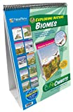 NewPath Learning 10 Piece Biomes Curriculum Mastery Flip Chart Set, Grade 5-10
