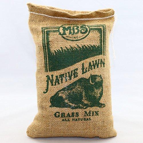 Native Lawn Grass Mix - 1 lb ()
