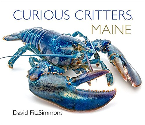 Curious Critters Maine (Curious Critters Board Books)