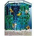 Aquariums & Fish Bowls