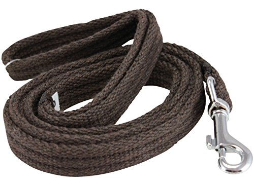 Dog Leash 4.5ft Long Organic Cotton Web Brown 4 Sizes (Small: 5/8