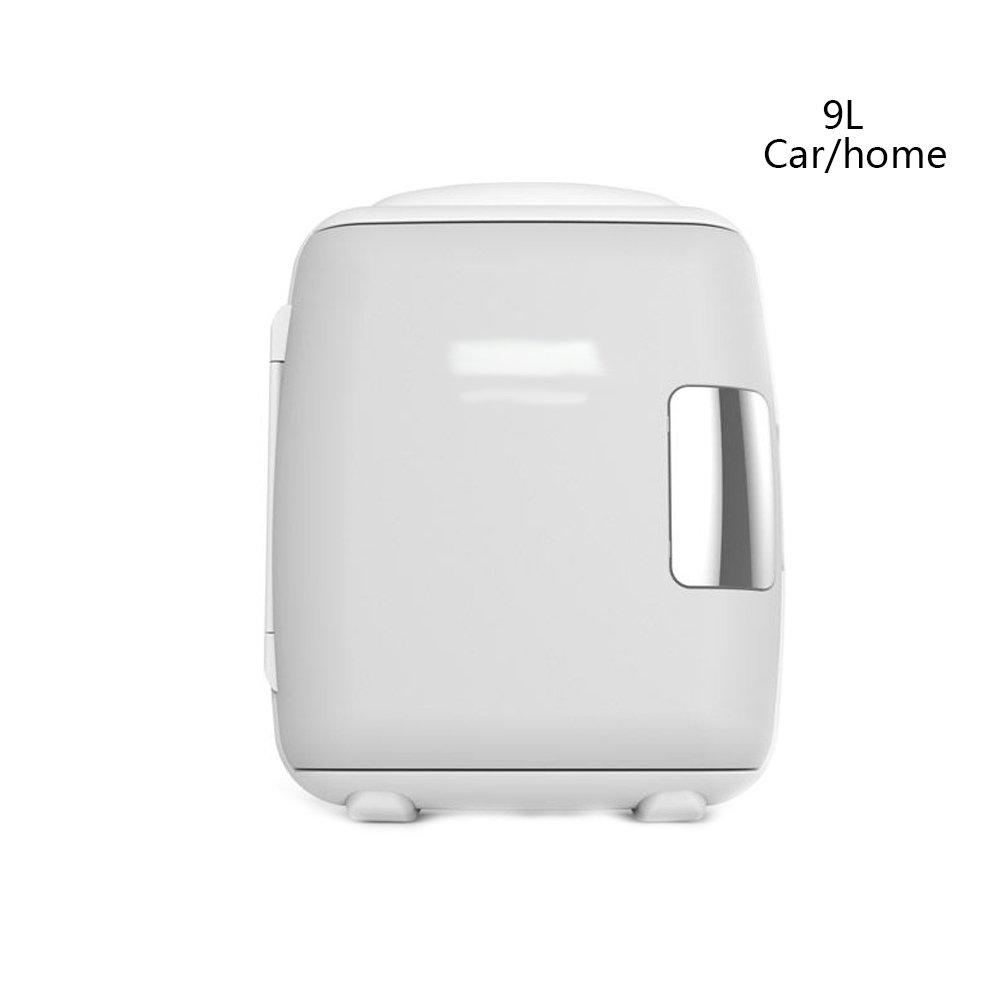 PIGE Mini refrigerador del Coche casero 9L / Mini refrigerador ...
