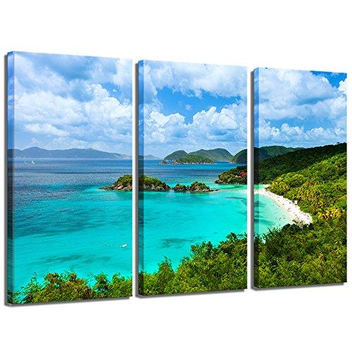 Sea Charm - Picturesque Trunk Bay,St.John,US Virgin Islands,Most Beautiful Seascape Beach Canvas Wall Art Modern Wall Decor 3 Pieces Canvas Print Giclee Artwork Each Piece 16