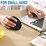 Wireless Vertical Mouse, Jelly Comb Wireless Mouse 2.4G High Precision Ergonomic Optical Mice with Adjustable Sensitivity 800 / 1200 /1600 DPI, 6 Buttons, 【 For Small Hands 】 - Black