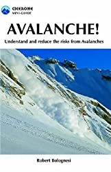 Avalanche!: Understand and Reduce Risks from Avalanches: Understand and Reduce the Risks from Avalanches (Cicerone Mini-guides)
