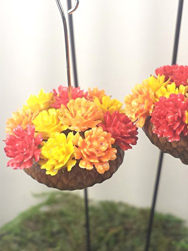 Miniature Orange (Fairy garden accessories. Miniature acorn planters. Set of 2. Autumn color flowers.)