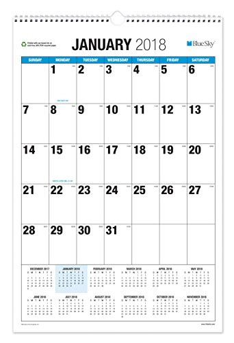 Blue Sky 2018 Monthly Wall Calendar, Twin-Wire Binding, Large Print, 20
