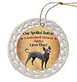Xoloitzcuintli Mexican Hairless Dog Christmas Doily Ceramic Ornament