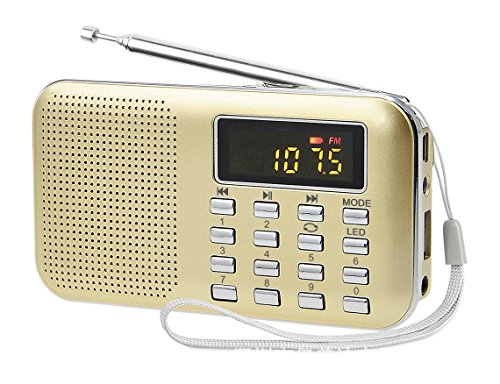 lefon-mini-digital-am-fm-radio-media-speaker-mp3-music-player-support-tf-card-usb-disk-with-led-scre