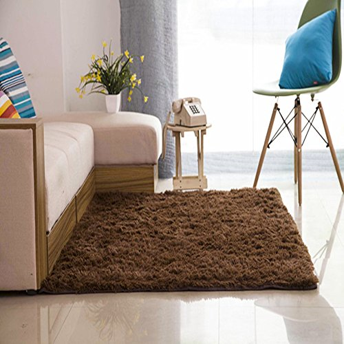 Spritech(TM) Shaggy Rugs Super Soft Carpet
