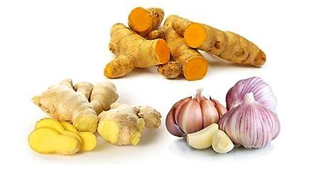 Botaniceutics GG&T - Organic Ginger, Garlic and Turmeric - 90 Capsules -  500 mg - Circulatory health