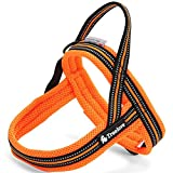 Pettom No-pull Dog Harness Soft Padded Mesh Pet Harness-11M Reflective for Small, Medium & Large Dogs