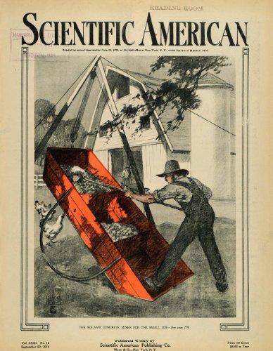 1919 Cover See Saw Concrete Mixer Chicken Coop Seielstad Farm Poultry Silo Hen - Original Cover (Silo Cover)