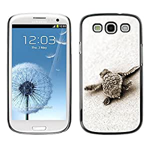 LASTONE PHONE CASE / Carcasa Funda Prima Delgada SLIM Casa Carcasa Funda Case Bandera Cover Armor Shell para Samsung Galaxy S3 I9300 / Cool Turtle Baby Cute Sand Sea Animal Marine
