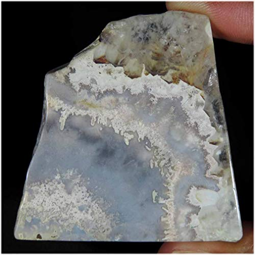 GEMSCREATIONS Rough Crazy LACE Agate for Cutting, Lapidary,Crafts, Natural Display 214.55Cts.