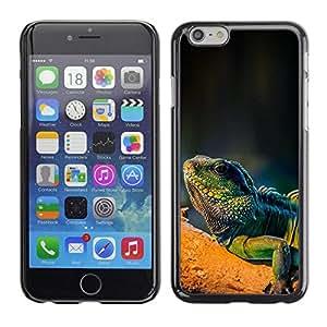 Be Good Phone Accessory // Dura Cáscara cubierta Protectora Caso Carcasa Funda de Protección para Apple Iphone 6 // Cool Majestic Iguana Lizard