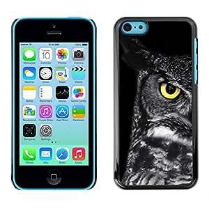 PC/Aluminum Funda Carcasa protectora para Apple Iphone 5C owl teacher school smart eye black / JUSTGO PHONE PROTECTOR