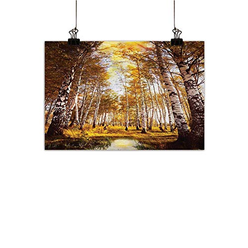 Gabriesl Tree Art-Canvas Prints Autumn Season Forest in Sunlight Near The River in Morning Idyllic View Print Wall Stickers Yellow Brown White W20 x H16