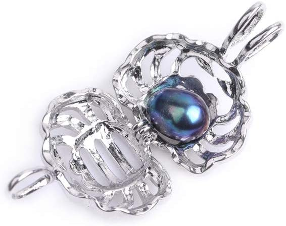 MARIE A FORTUNEL Horoscope Aquarius Zodiac Sign Cage Love Wish Pearl Silver Plated Necklace Kit Gift Pearl in Oyster