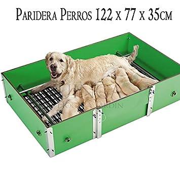 Previenen la mortalidad de los Cachorros en criaderos Profesionales: Amazon.es: Productos para mascotas