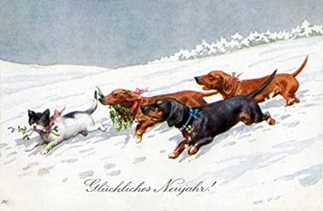 LARGE New Blank Christmas Note Cards Ferterag Dachshund Dog Delivers Card K
