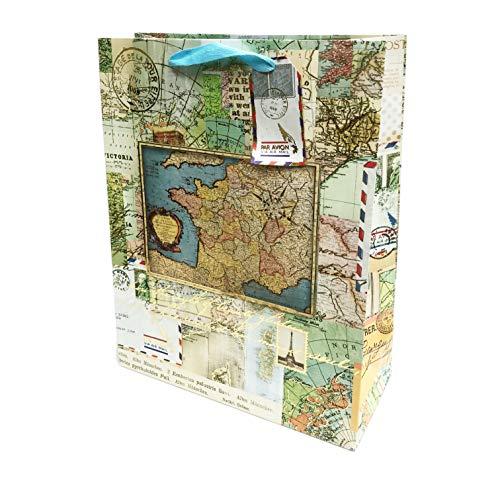 Punch Studio Large Vertical Gold Foil 3D Embellished Gift Bag w/Gift Tag ~ France Map Par Avion 16639
