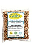 Super 5 Seed Granola, 2 LBS By Gerbs - Top 12 Food Allergy Free & NON GMO - Preservative Free & Kosher - Pumpkin, Sunflower, Chia, Hemp, & Flax Seeds