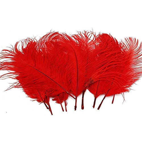 RDTIAN 10PCS can dye Ostrich Craft Feathers Wedding Fun Special Table Flower Decoration Great for Decoration Parties (Red, 10PC) (Best Diy Hair Dye Australia)