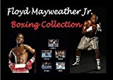 Floyd Mayweather jr. Boxing DVD Collection