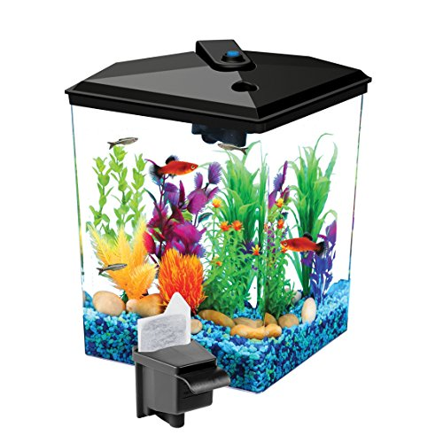 Koller Products 1-Gallon Betta Aquarium Kit, LED Light, Power Filter, and Betta Fish Tank, AP11104FFP