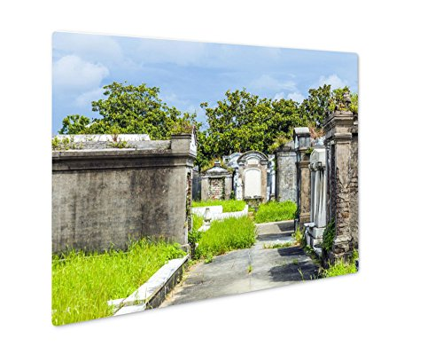 (Ashley Giclee Metal Panel Print, Lafayette Cemetery In New Orleans With Historic Grave Stones, Wall Art Decor, Floating Frame, Ready to Hang 16x20,)