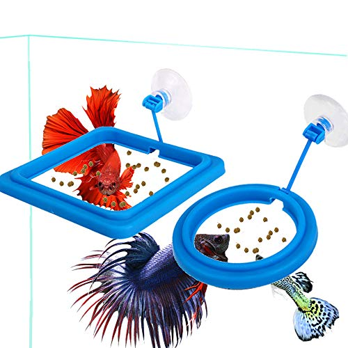 FLOURITHING 2 Pcs Fish Feeding Ring, Fish Safe Floating Food Feeder Circle Blue, with Suction Cup Easy to Install Aquarium, Square and Round Shape Fish Tank Towels - for Guppy, Betta, Goldfish, Etc.