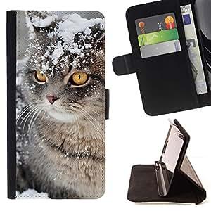 Momo Phone Case / Flip Funda de Cuero Case Cover - Invierno Nieve Manx Cat Curl Americano; - Samsung Galaxy J1 J100