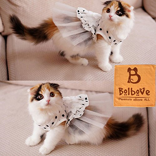 i'Pet Princess Floral Cat Party Bridal Wedding Dress Small Dog Flower Tutu Ball Gown Puppy Dot Skirt Doggy Photo Apparel Stretchy Clothes Mesh Costume for Spring Summer Wear (White, Large)