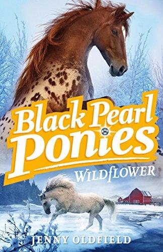Black Pearl Ponies: Wildflower: Book 2