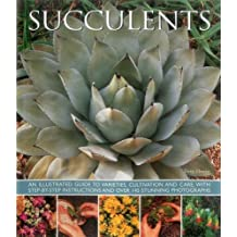 Succulents: An illustrated guide to varieties, cultivation and care, with step-by-step instructions and over 145 stunning photographs